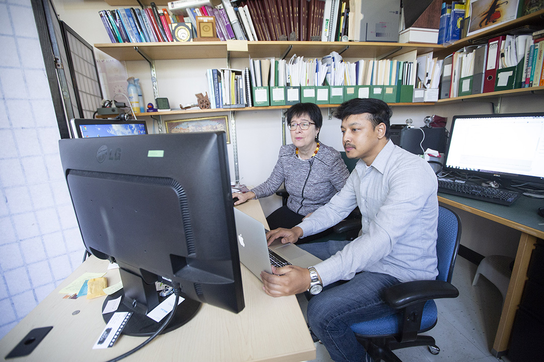 USask system to improve online privacy